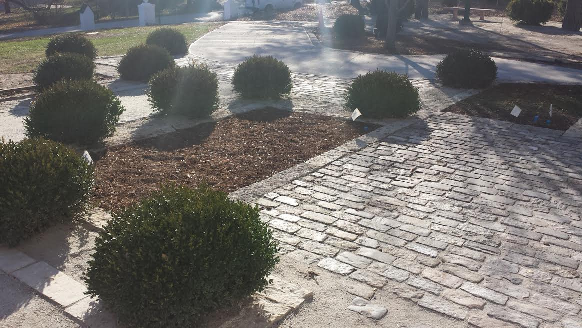Diagonal shot of the Salt and Pepper Cobblestone walkway with bushes along the edges and dirt areas in the middle.