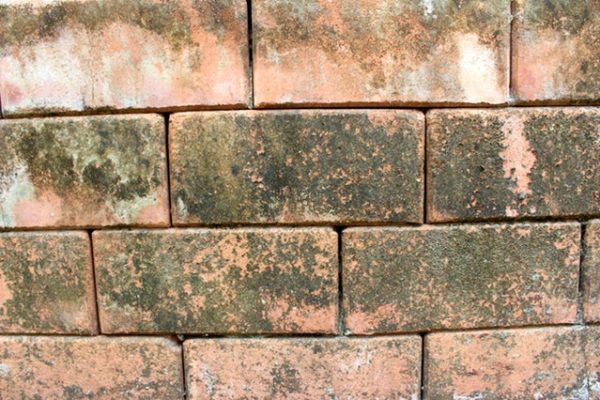 How to Clean Old Brick Pavers | Reclaimed Brick Maintenance