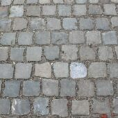 Close-up photo of Antique European Sandstone Cobbles paving.