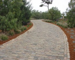 Photo of what seems to be a sidewalk or pathway that was built using Reclaimed St. Louis Cobblestone. There's mulch to both sides and a lot of bushes to the left and some trees to the right.