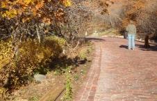 Historical-Bricks-Project-Ideas-Brick-Driveway-Ogden-UT-KS Flats UT6